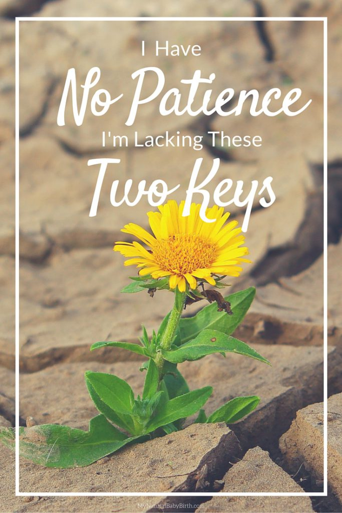 I Have No Patience - I'm Lacking These Two Keys (5)