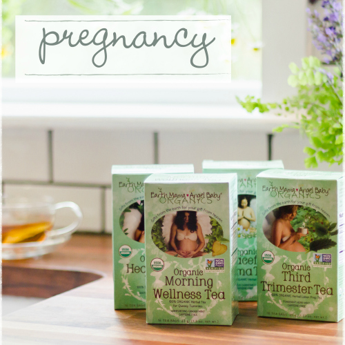 Earth Mama Angel Baby Pregnancy Products
